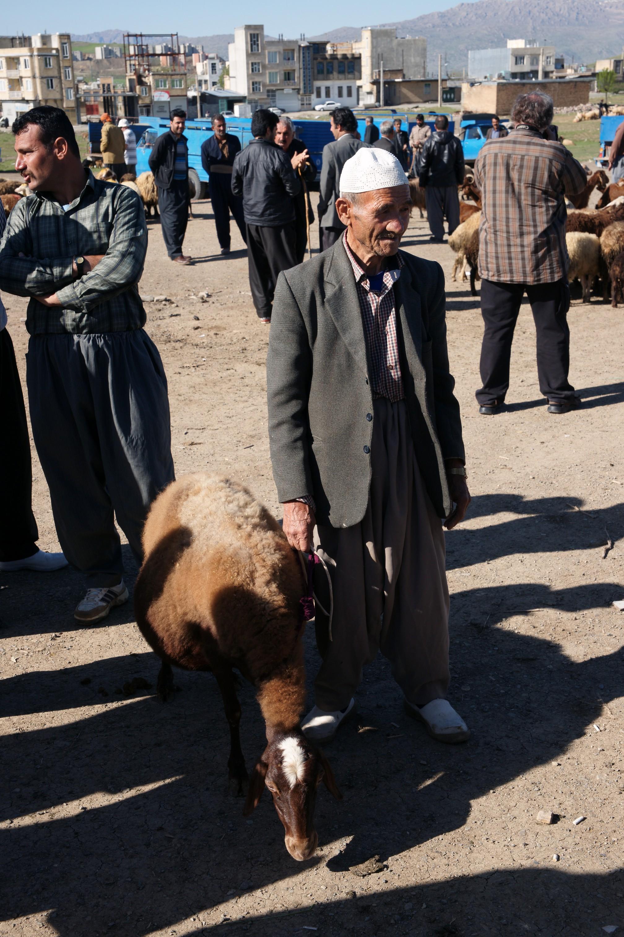 20160421_093214_A900.12578 Děda s ovcí